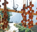 椎葉村 干し柿