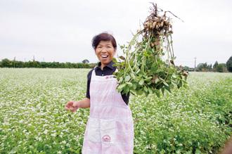 今井農園の写真