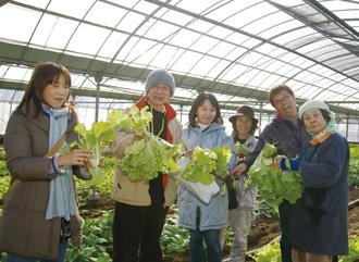 宮崎グリーンツーリズム 宮崎市 農業体験