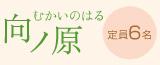 諸塚村 向ノ原