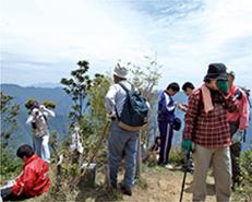 ふれあい登山 山頂の風景